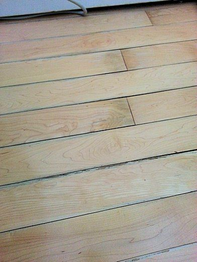 Water Vs Wood 171 Hardwood Flooring Guide